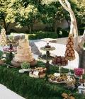 masuta-cu-dulciuri-desert-nunta-42
