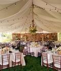 organizare-nunta-afara-in-curtea-casei-13