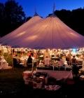 organizare-nunta-afara-in-curtea-casei-16