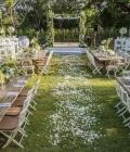 organizare-nunta-afara-in-curtea-casei-5