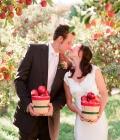 organizare-nunta-in-aer-liber-in-gradina-livada-13