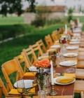 organizare-nunta-afara-in-gradina-livada-3