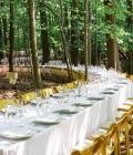 organizare-nunti-afara-in-padure-1