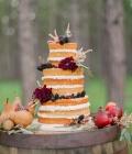 organizare-nunti-afara-in-padure-12