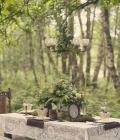 organizare-nunti-afara-in-padure-4