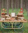 organizare-nunti-afara-in-padure-9