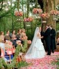 organizare-nunti-afara-in-padure