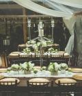 organizare-nunti-in-aer-liber-in-padure-11