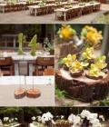 organizare-nunti-in-aer-liber-in-padure-2
