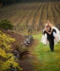 organizare-nunta-in-aer-liber-langa-vita-de-vie-1