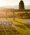 organizare-nunta-in-aer-liber-langa-vita-de-vie-11