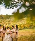 organizare-nunta-in-aer-liber-langa-vita-de-vie-2