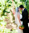 organizare-nunta-in-aer-liber-langa-vita-de-vie-20