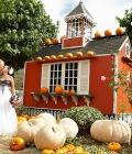 nunta-toamna_accesorii-si-decoratiuni-cu-dovleac-15
