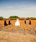 nunta-toamna_accesorii-si-decoratiuni-cu-dovleac-8