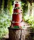 organizare-nunta-dtematica_padure-natura-6