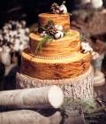 organizare-nunta-dtematica_padure-natura-7