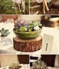 organizare-nunta-dtematica_padure-natura-9