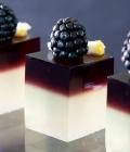 cocktail-nunta_gourmet-jell-o-shots-3