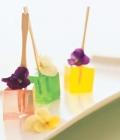 cocktail-nunta_gourmet-jell-o-shots-4