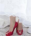 Pantofi de nunta colorati (II)