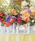 stil-nunta_culori-curcubeu_multicolor-29