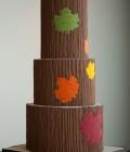 decoratiuni-pentru-tort-de-nunta_frunze-toamna-18