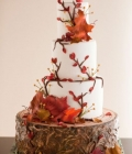 Torturi de nunta decorate cu frunze