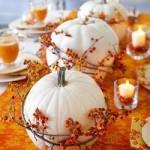 aranjamente centrale pentru mese de nunta_dovleac_poza profil