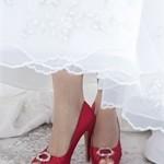 pantofi de nunta colorati_profil